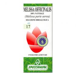 17-Melisa (Melissa Officianalis) 50ml
