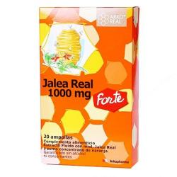 ARKO REAL Jalea Real Forte 1000mg (20 Ampollas)