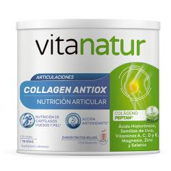 Collagen ANTIOX (180g)