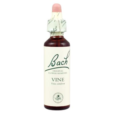 Vine (Vid) 20ml