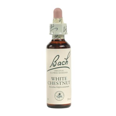 White Chestnut (Castaño blanco) 20ml